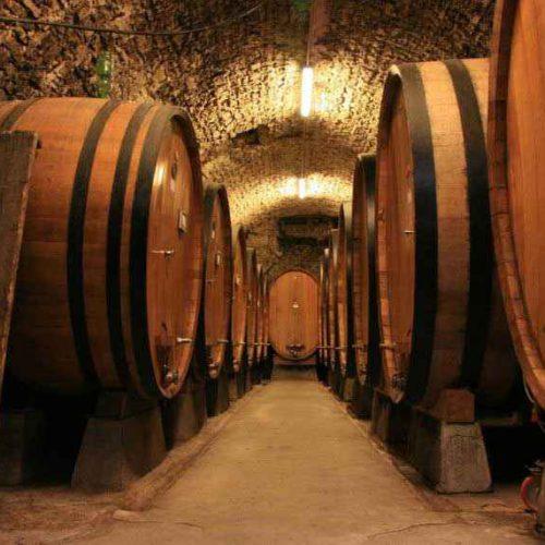 Титов предостерег от повышения акцизов на шампанское перед Новым годом